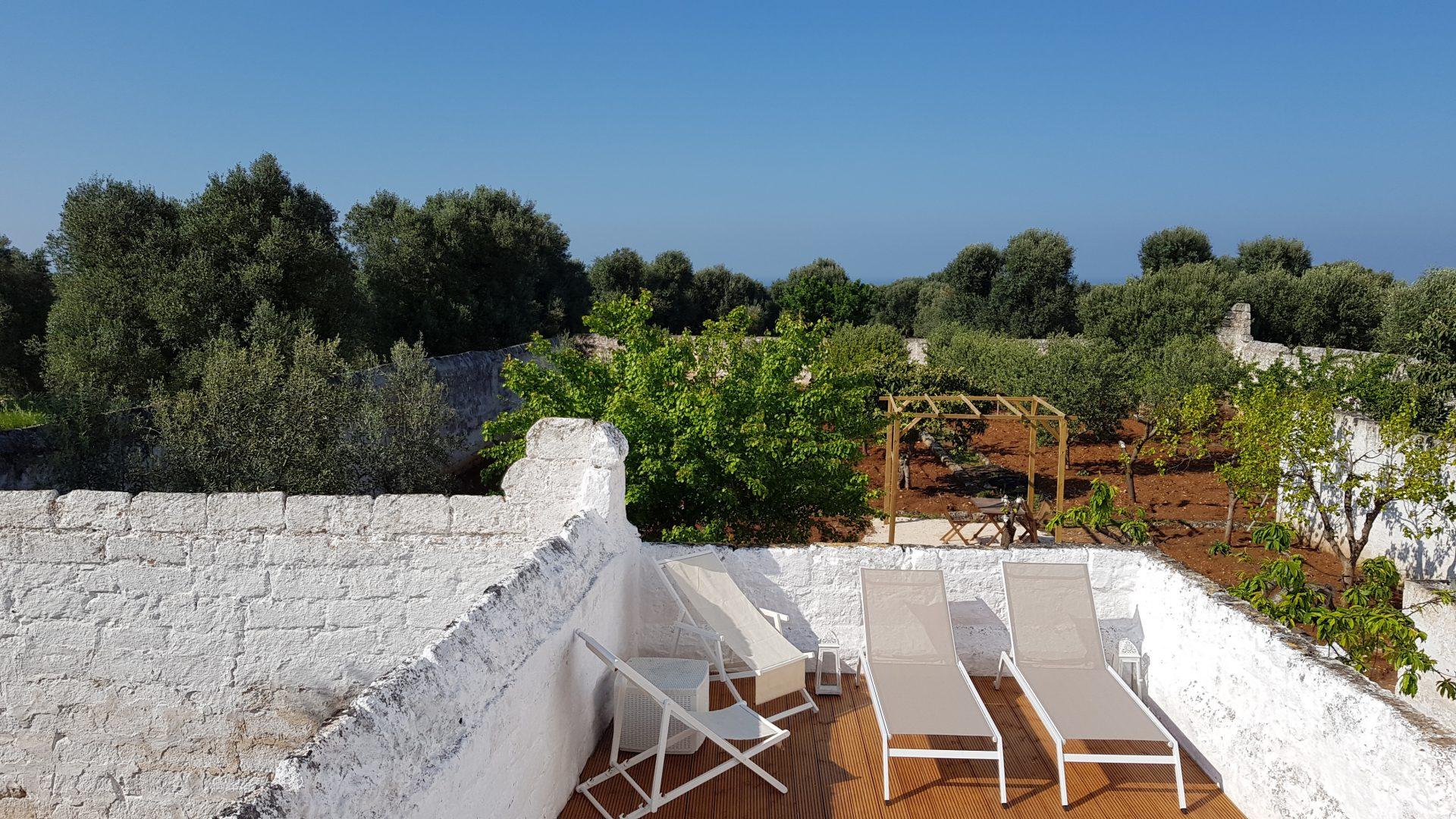 Swimming pool deck, walls and olive groves at Pool at Masseria Bellavista historic holiday vacation rental villa in ostuni puglia seaview